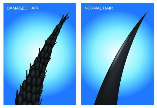cheveux normaux abimés