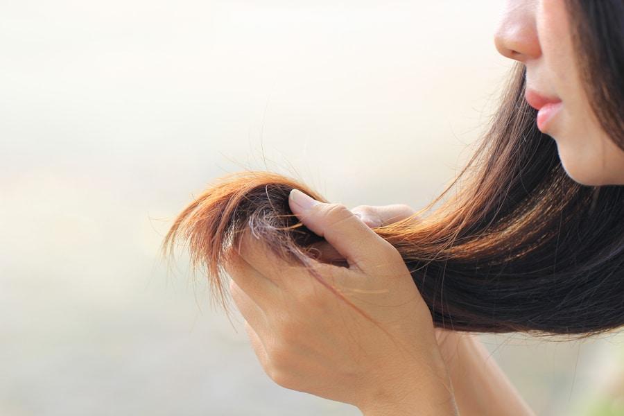 fourches cheveux femme